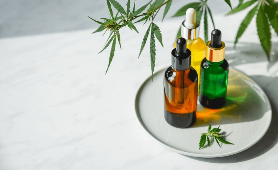 Tips For Choosing The Right CBD Shop