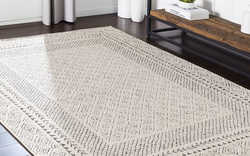 Modern Area Rugs-Give New Life to your Homes